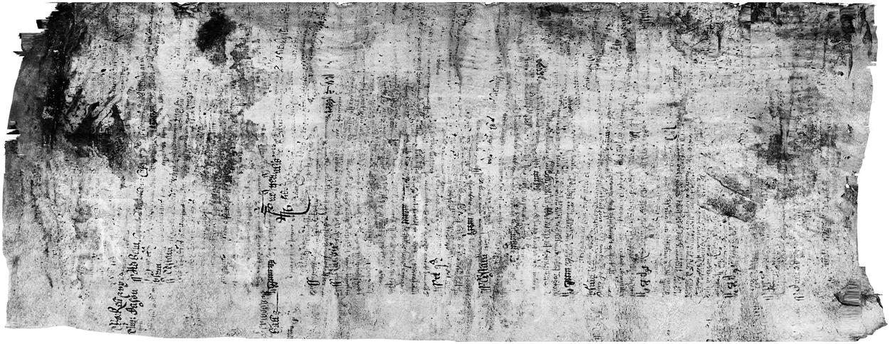 Восстановление утраченных текстов с помощью современных технологий. Железо - 5