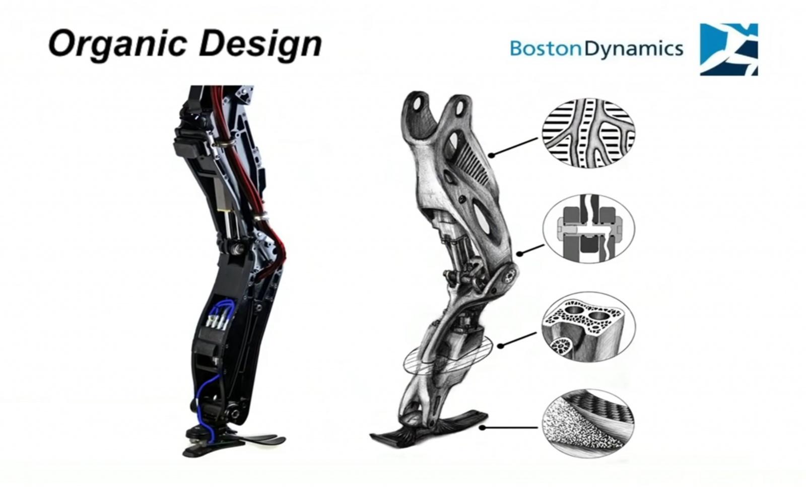 Слева — классическая конструкция: винты, кабели и разъемы. Справа — усовершенствованная. Она больше похожа на анатомический рисунок. Часть бедра с гидравликой, каркас, приводы и вся остальная машинерия будто образуют единое целое