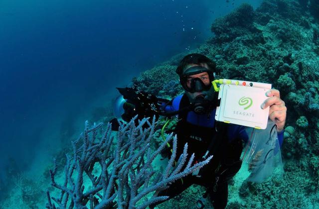 Выжить в Долине Смерти и на дне рифа: контроль качества Seagate - 2