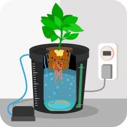 Жизнь замечательной картошки и современные технологии - 16