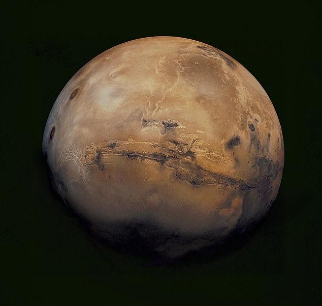 Илон Маск: «Марс — свободная планета, там не действуют законы Земли» - 1