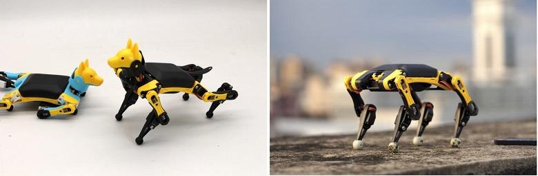 Робот-собака Bittle размером с ладонь вызвал большой интерес из-за своих возможностей и цены