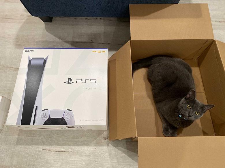Перед покупателями Sony PlayStation 5, получившими кошачий корм вместо приставки, извинились