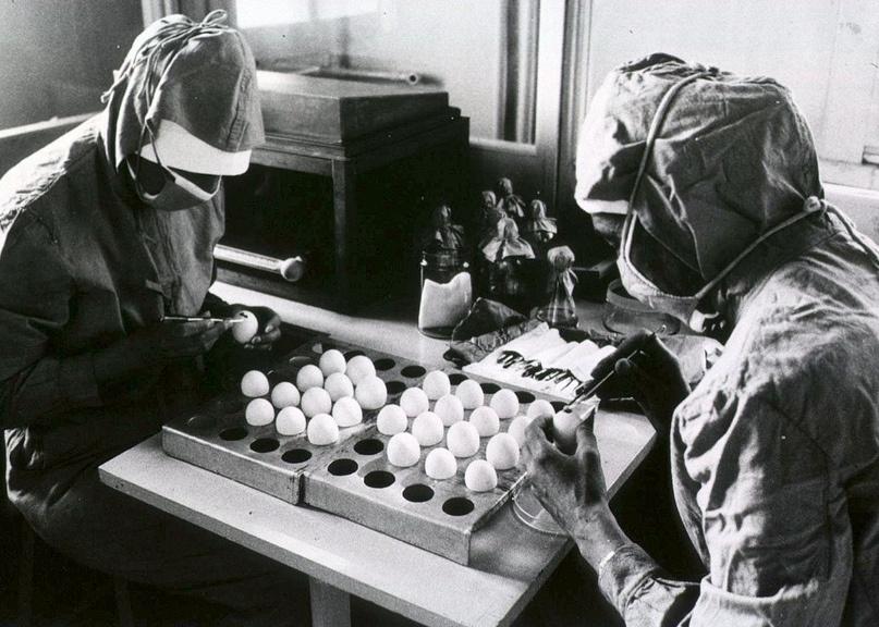 «Вирус Марбурга — пандемия в клетке» - 3