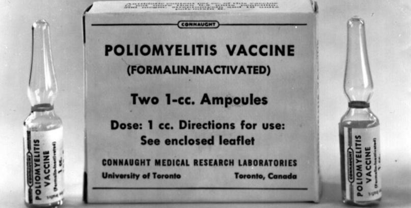 «Вирус Марбурга — пандемия в клетке» - 7
