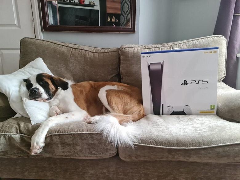В погоне за «абсолютно распроданной» PlayStation 5. Sony пообещала новый завоз к праздникам