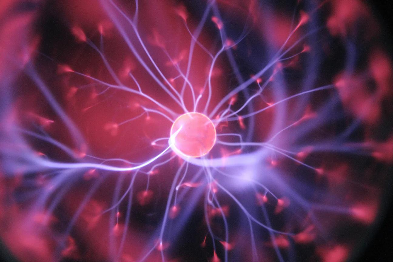Иди и смотри: ученые научились перепрограммировать зрение - 2