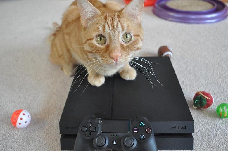 Sony обновила PlayStation 4 и там не только повышение стабильности