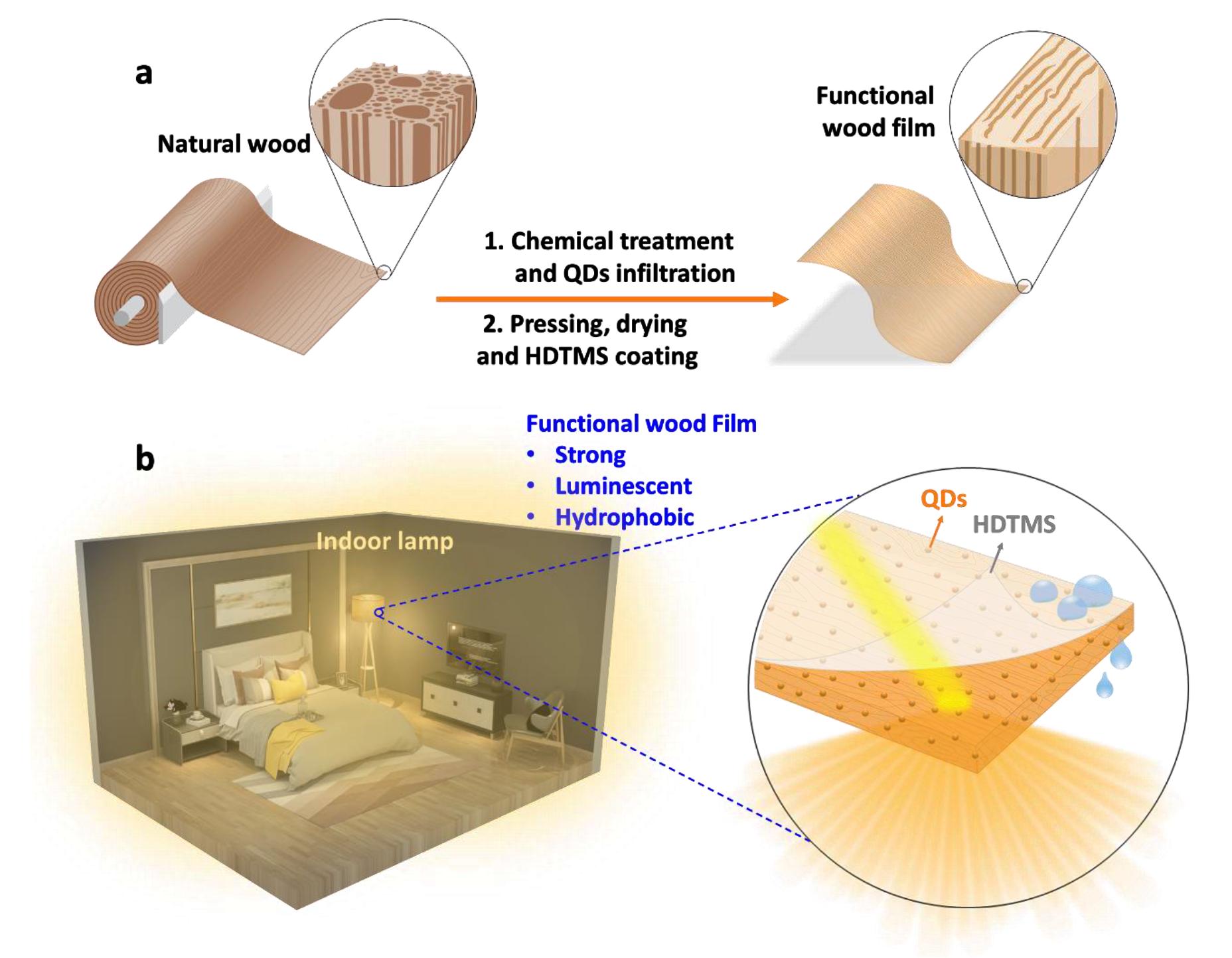Экологически чистое освещение: люминесцентная гидрофобная древесина - 2