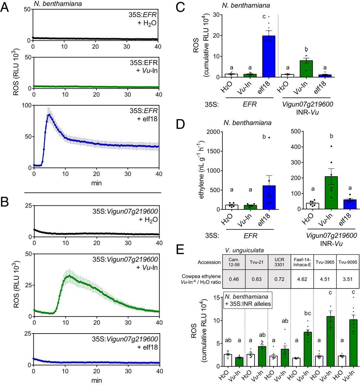 Зеленый иммунитет: как растения реагируют на травоядных насекомых - 3