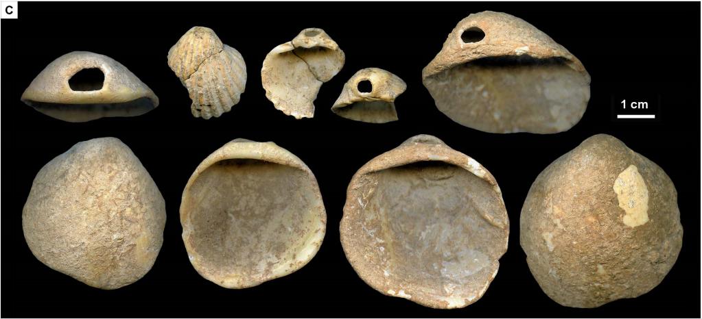 Радиоизотопная датировка и археология. К вопросу об уран-ториевом методе и неандертальском искусстве - 4