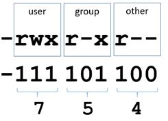 Основы Bash-скриптинга для непрограммистов. Часть 2 - 2