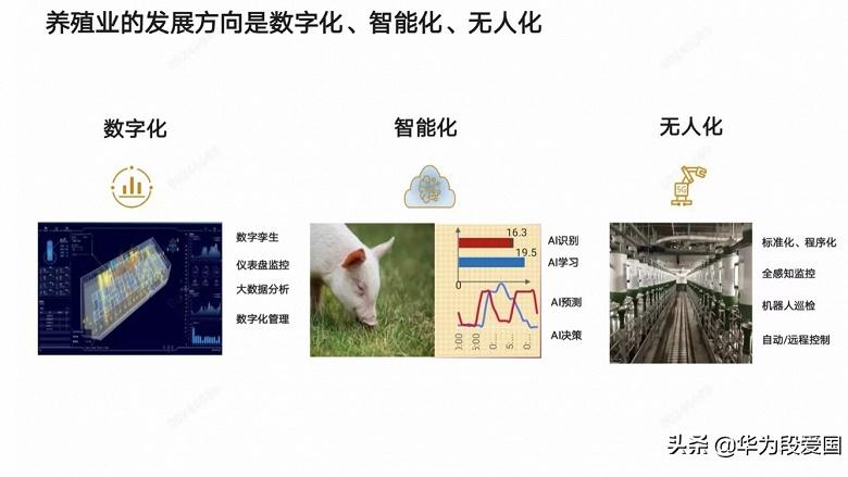 С 5G и роботами. Huawei анонсировала суперсовременную интеллектуальную платформу для выращивания свиней