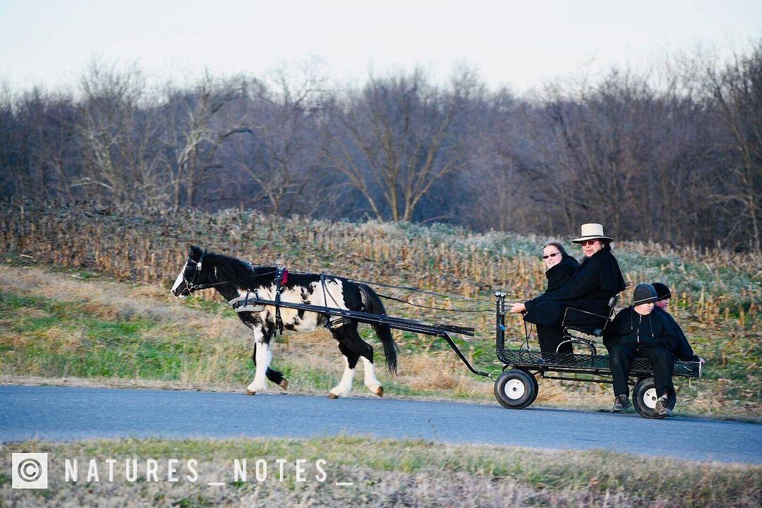 Медленные гики: как амиши внедряют новые технологии - 8