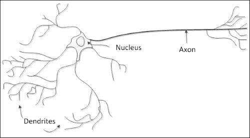 Начало работы с нейронными сетями - 1
