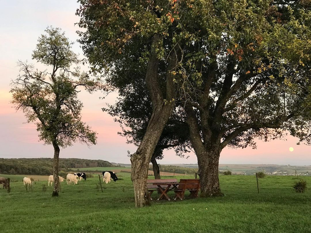 [Личный опыт] Страна фермеров и банков: как живётся разработчику в крошечном Люксембурге - 4