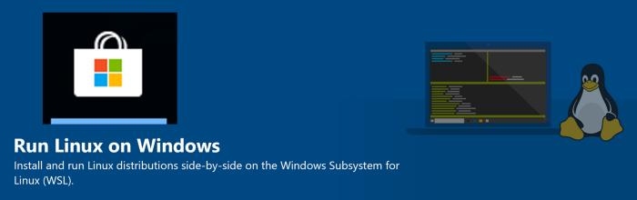 Microsoft начал тестирование поддержки запуска GUI-приложений Linux в Windows - 4