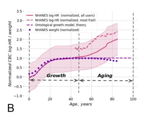Всему свое время: геронтологи определили предельный возраст человека в 150 лет - 2