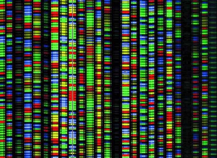 Система хранения данных на основе ДНК: реально ли это и как работает? - 1