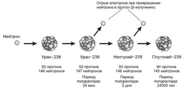 Реактор БРЕСТ-300 и замкнутый цикл в ядерной энергетике - 5