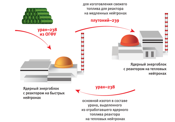 Реактор БРЕСТ-300 и замкнутый цикл в ядерной энергетике - 8