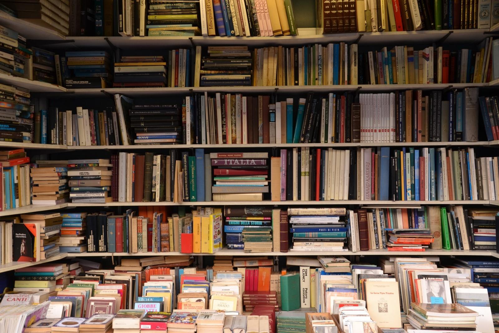 Книжный рынок мёртв, а я ещё нет - 1