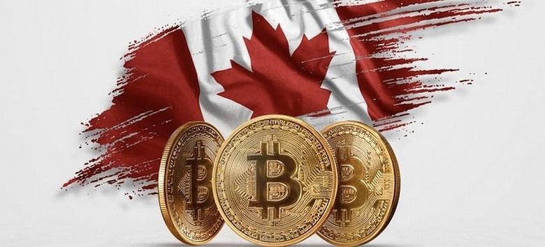 Более четверти канадцев инвестирует в криптовалюту