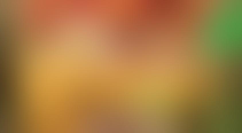 Пример Blurry placeholder.