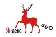 SEO & SMO / Нижегородское SEO или сага о персональных данных
