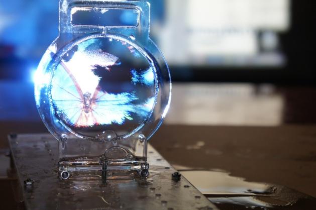 3D дисплей из мыльного пузыря