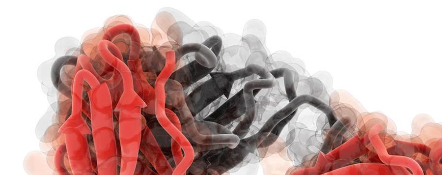 3D модели вирусов человека. Часть вторая: молекулярное моделирование и биоинформатика