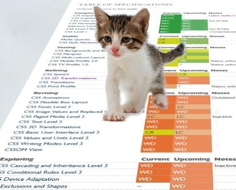 Веб-стандарты / В продолжение темы защиты котят
