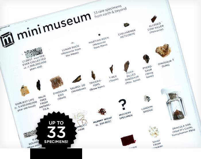Mini Museum: естественно научный музей в миниатюре на собственном столе