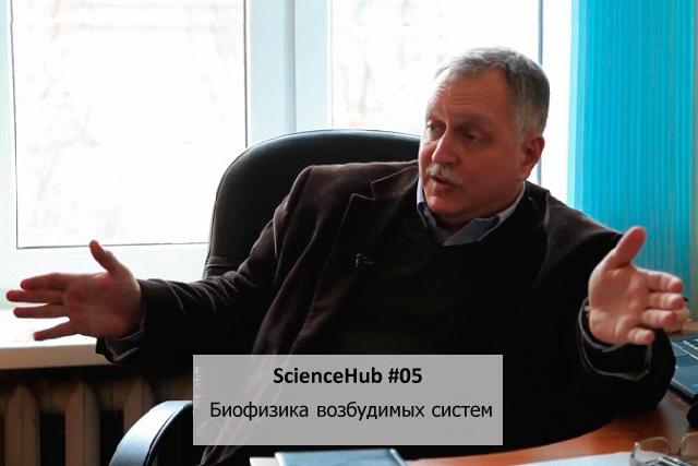 ScienceHub #05: Биофизика возбудимых систем