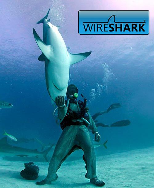 Wireshark — приручение акулы