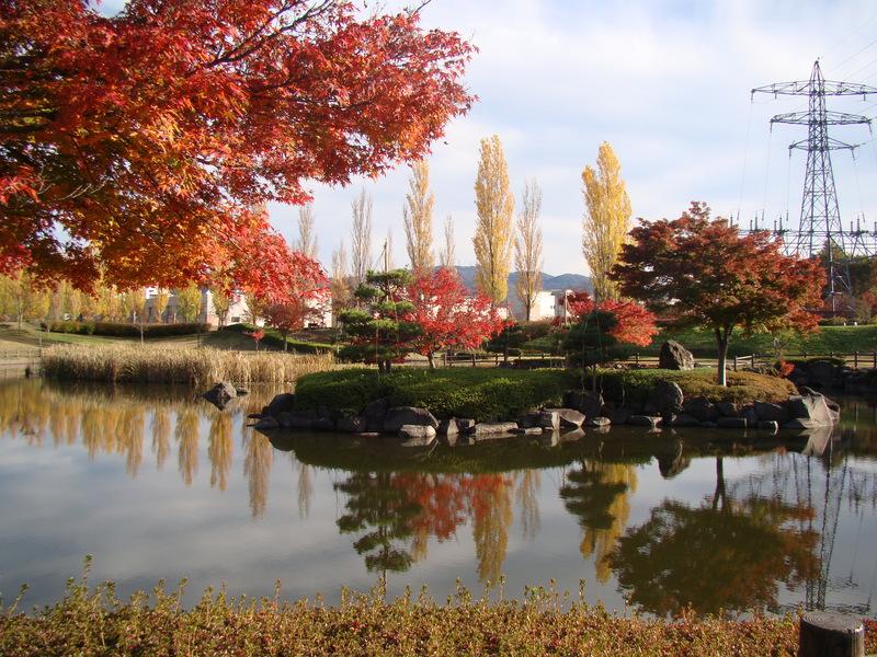 Аспирантура в Японии — опыт поступления и личные впечатления