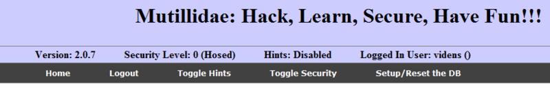 Вопросы безопасности в веб технологиях / Уязвимы по определению