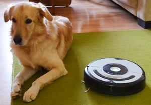 Год с Roomba