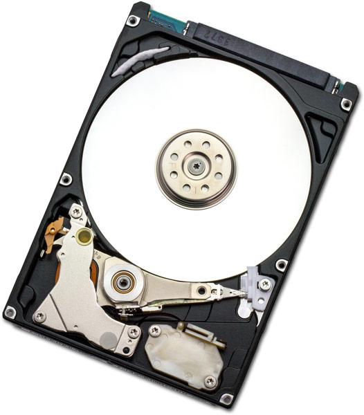 В семейство HGST Endurastar J4K320 входят HDD объемом 320, 250, 200, 100 и 80 ГБ