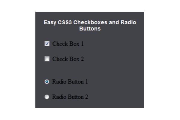 Красивые чекбоксы и радиокнопки на CSS3 без JavaScript
