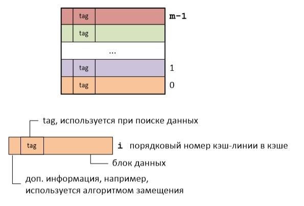 Логическая организация кэш памяти процессора