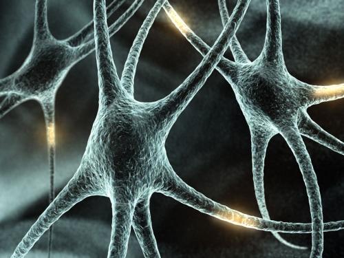 Логика мышления. Часть 11. Динамические нейронные сети. Ассоциативность