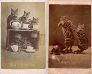 Метаданные для организации хранения фото архива
