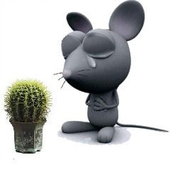 Мыши плакали, кололись, но продолжали грызть кактус