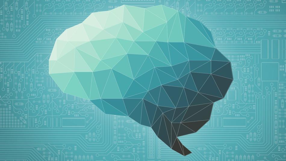 Нейропластичность — 8 изменений в человеке, сформировавшихся под воздействием технологий
