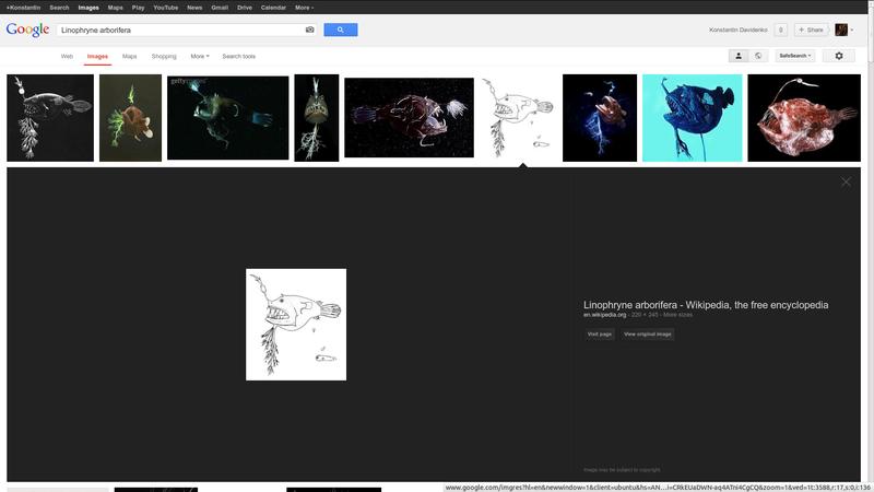 Новый дизайн поиска Google Image