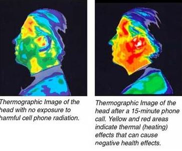 О вреде сотовых телефонов