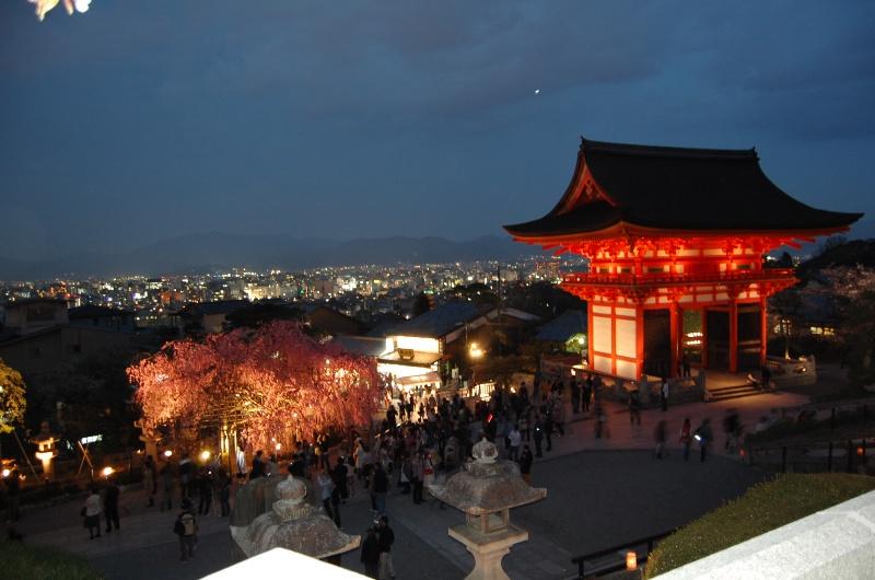 Обучение в Японии, в Киотском Университете. Начало