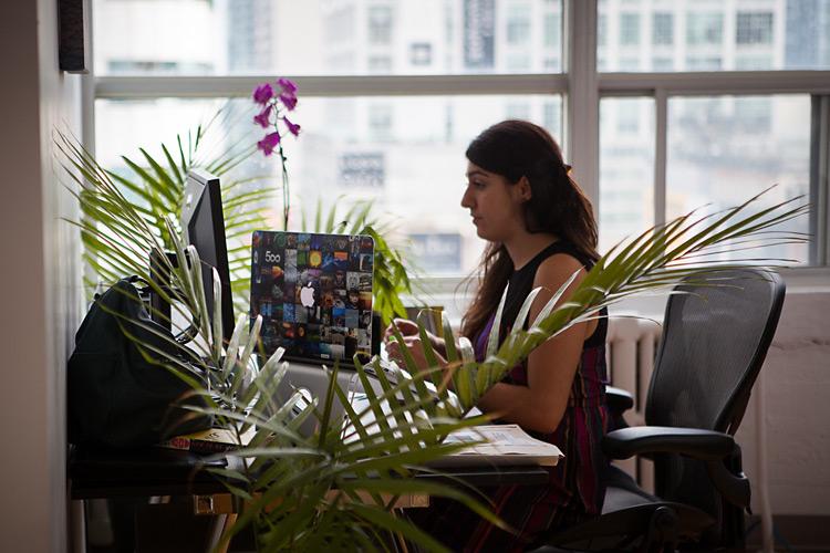 Один день в офисе 500px. Фото рассказ